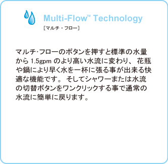 Multi-Flow Technology